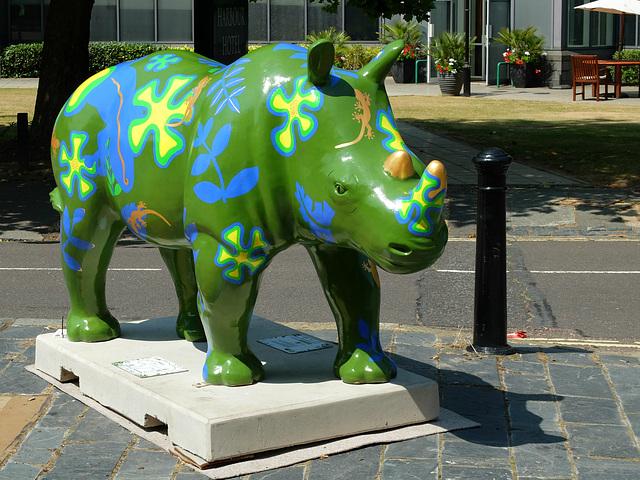 Go! Rhinos_006 - 14 July 2013