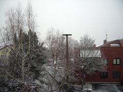 Xmas + snow