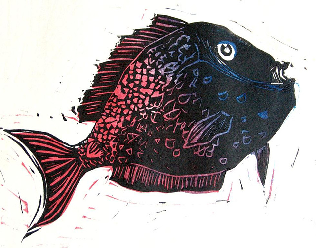 Two-Colored Fish print