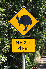 Signs of the Cassowary III - Street signs