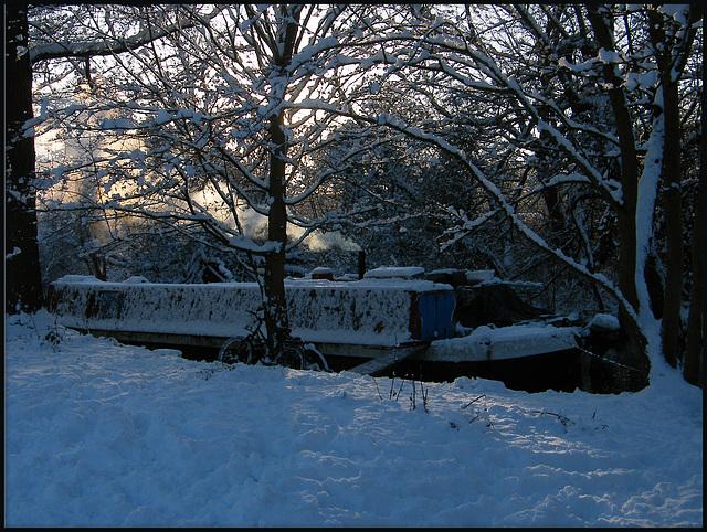 woodsmoke in the snowy twilight