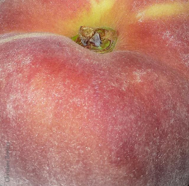 Farmer's Market Peach (B)