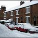 snowed-up cars (ha ha)