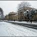 winter in Jericho