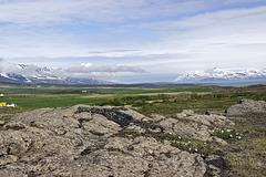 Just off Akureyri