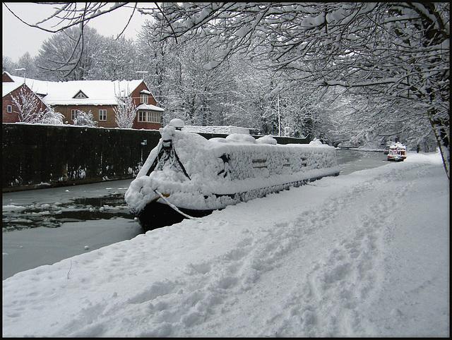 snowy mooring