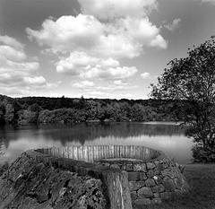 Spiral Seat, Clifton Reservoir.