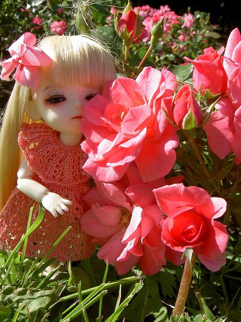 Lumi and roses