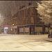 snowy night in Jericho