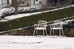 Warten auf den Frühling (Wilhelma)