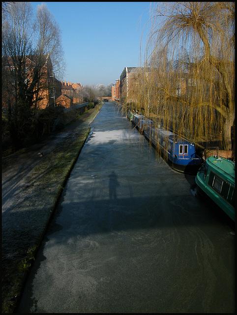 portrait on ice