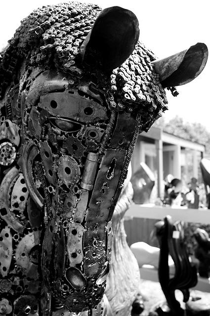 Hampton Court Flower Show Ricoh GR Horse
