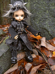 Deimos and fall leaves