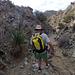 Long Canyon (01180)