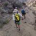 Long Canyon (01142)