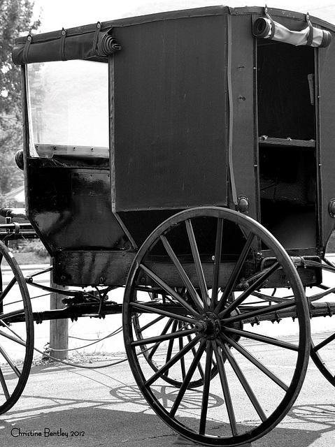 Amish Buggy EXPLORED #304