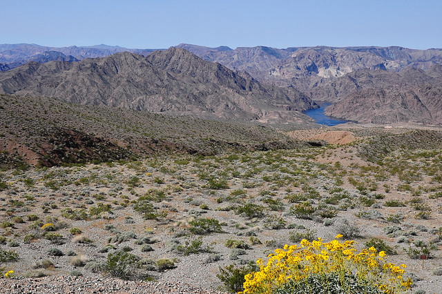 ein kleines Stück Colorado River