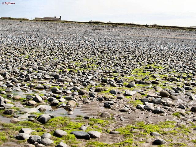 07 Walney beach