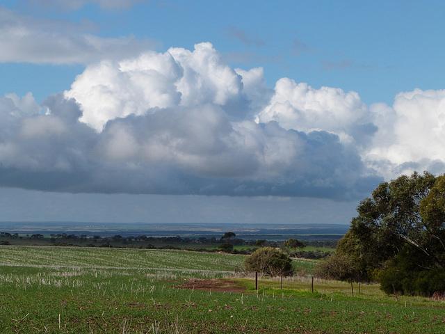 Between Callington and Kanmantoo