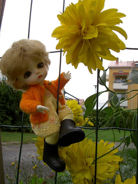 Eggie and the yellow flower