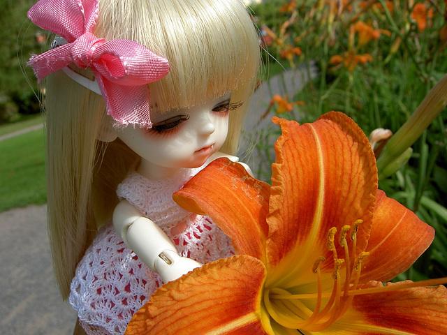 Lumi and a tiger lily