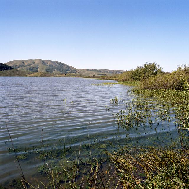 Lake Nicasio