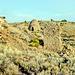 35-ruins&kiln_Frisco_UT-4-92_adj
