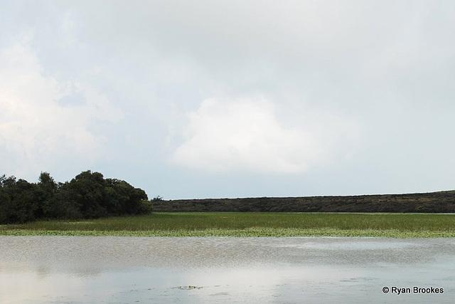 20081006-0460