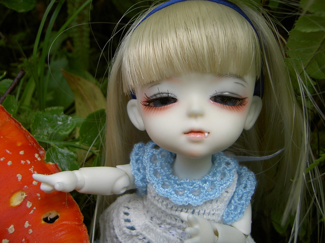 Lumi-Alice in the forest