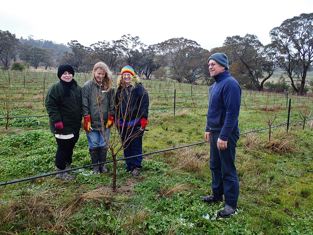 fruit tree workshop in Castlemaine