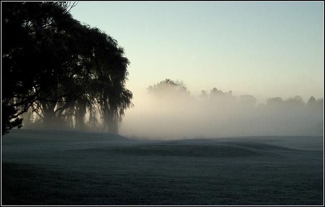 Fog ~ Octo 28th 2007