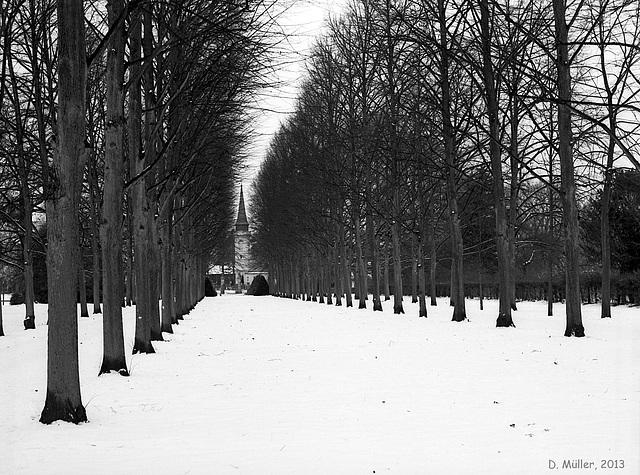 Allee im Französischen Garten, Celle