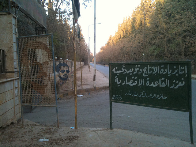 Syria 2010/11