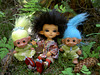 Niks, Naks and Thuban in the enchanted forest