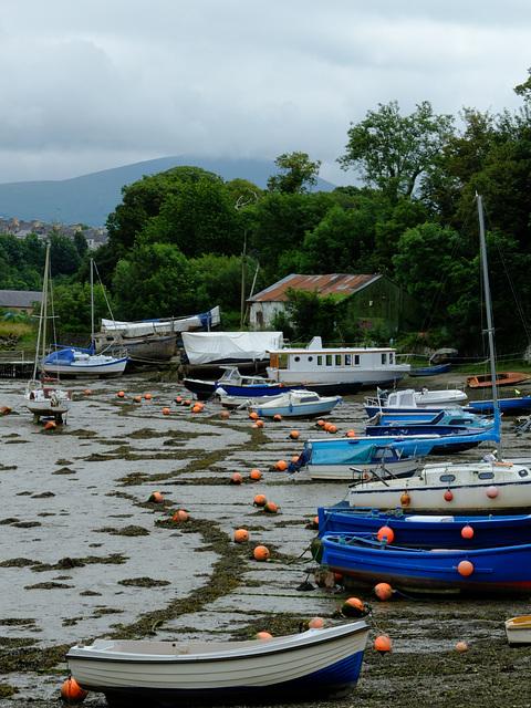 River Seiont [Afon Seiont]_002 - 30 June 2013