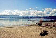 06-shoreline-r_adj