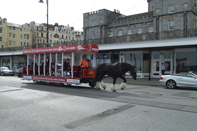 Isle of Man 2013 – Albert pulling tram № 43