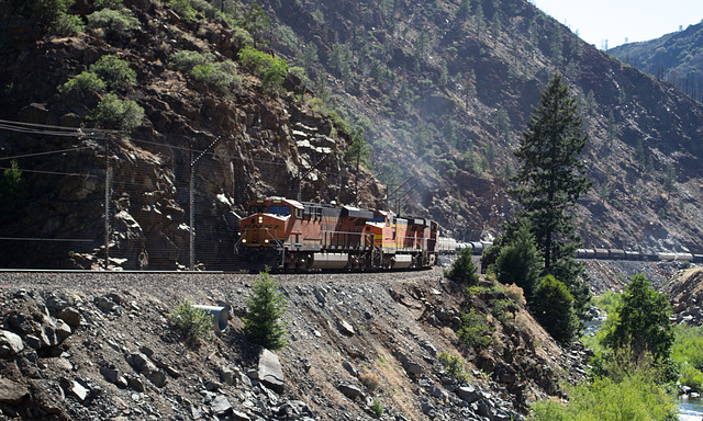 Feather River BNSF freight (0191)