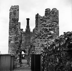 Framlingham castle (1)
