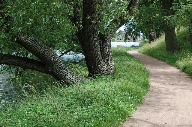 Svingoplena vojo 2 (Schwungvoller Weg)