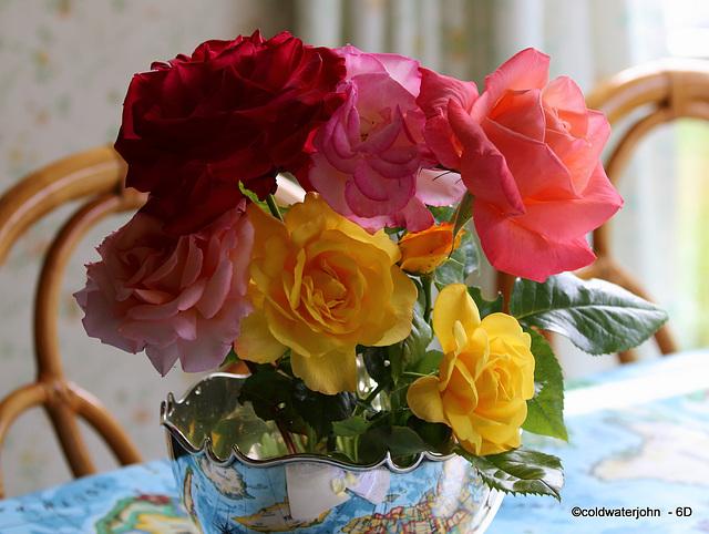Morning's Roses