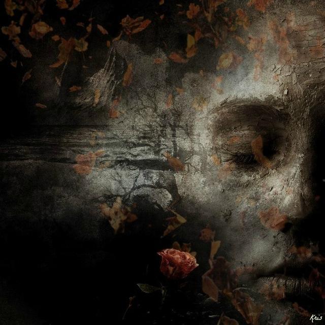 Elle dit qu'à chaque fois qu'un arbre disparaît .............Elle a des remords