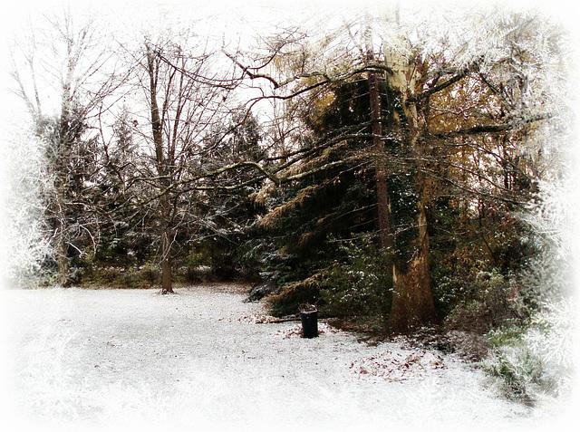 First snow of the season ~ Nov 11th 2011
