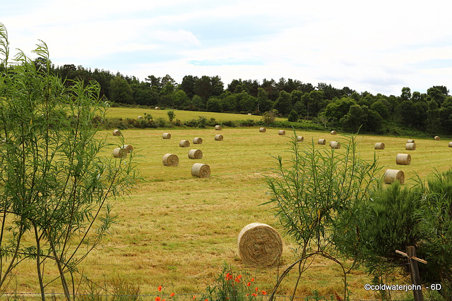 Well, that's the hay all baled for another year