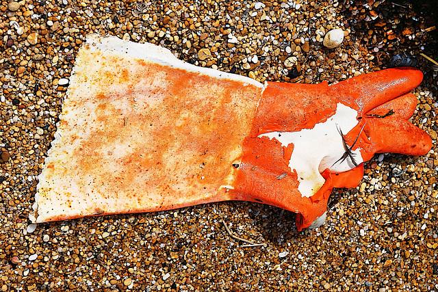 Les gants de la mer