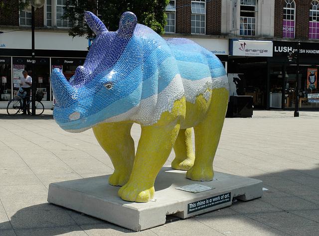 Go! Rhinos_021 - 16 July 2013