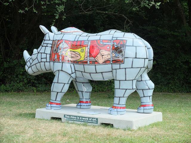 Go! Rhinos_028 - 17 July 2013