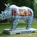 Go! Rhinos_029 - 17 July 2013