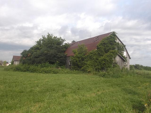Grange abandonnée à vendre / Abandoned barn for sale.