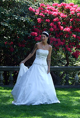 Tattooed Bride in Old Westbury Gardens, May 2009